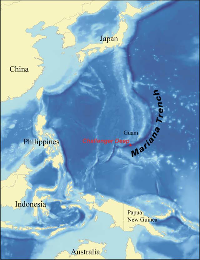 Марианский желоб на карте мира. Погружения, фото со дна впадины, глубина, обитатели