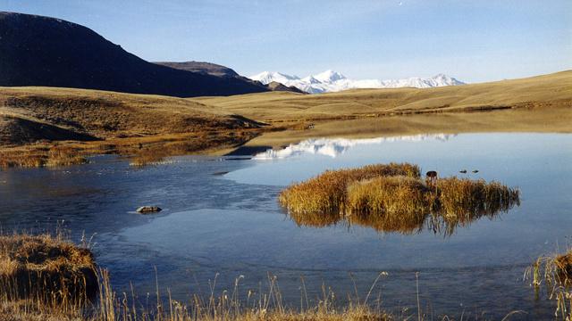 Катунский заповедник биосферный, Республика Алтай. Фото, где находится на карте, животные, природа, географическое положение