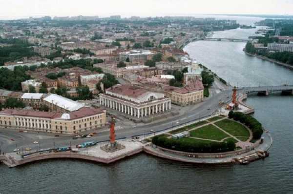 Река Нева на карте России. Откуда вытекает и куда впадает, описание, интересные факты, растения и животный мир