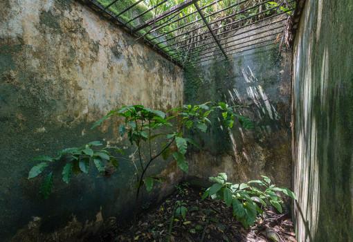 Французская Гвиана остров Дьявола. Фото, где находится на карте мира, история, тюрьма