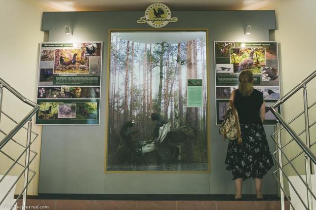 Валдайский национальный парк. Фото, презентация, где находится на карте, описание