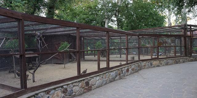 Парк Лога Каменск-Шахтинский. Фото, сайт, цены 2020, отзывы, адрес, как добраться