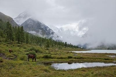 Республика Алтай. Достопримечательности, природные богатства, самостоятельный маршрут на карте, что посмотреть, фото